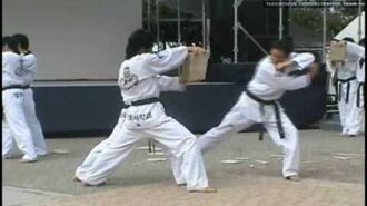 Kyung Hee University Taekwondo Demonstration