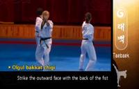 Taebaek OutwardBackfistStrike