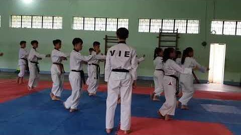 Bigak 3 - Vietnam Poomsae Team (1)