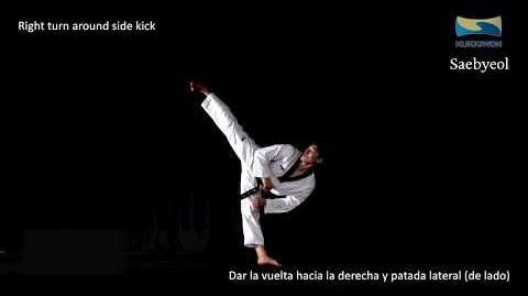 Saebyeol Learning New Kukkiwon Poomsae (Taekwondo English & Spanish)