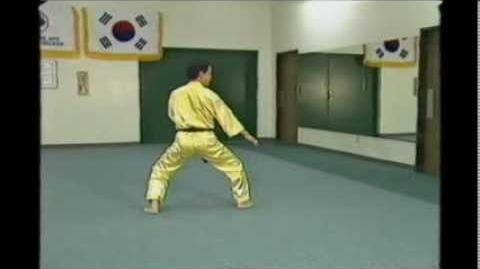 Jung Yee by Grand Master Jhoon Rhee (Side View)
