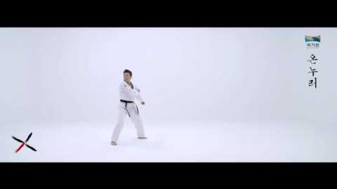 10th Taekwondo New Poomsae (온누리) Onnuri for Age 50 60 Korean version