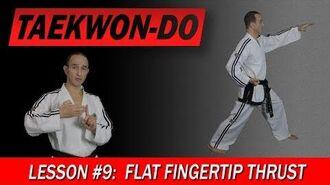 Taekwon-Do Lesson 9 Flat Fingertip Thrust