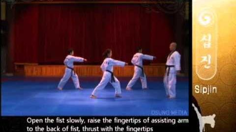 Grand Master Kyu Hyung Lee - WTF Poomsae Sipjin