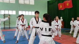 Bigak 2 - Vietnam Poomsae Team (3)