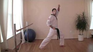 TaeKwonDo Front Stance and Walking Stance Tutorial