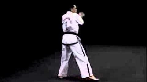 5 - YUL-GOK Tul - Taekwon-Do I.T.F