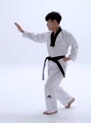 Ap Juchum Seogi