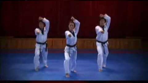 Grand Master Kyu Hyung Lee WTF Poomsae Jitae