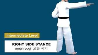 Taekwondo 2D - Right Side Stance ( 오른 서기 oreun sogi )