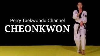 CHEONKWON - Kang Su Ji - Taekwondo Black Belt Poomsae 07