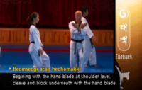 Taebaek LowKnifehandOpeningBlock