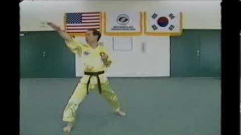 Pyung-Wa | Taekwondo Wiki | FANDOM powered by Wikia