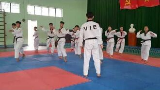 Bigak 3 - Vietnam Poomsae Team (2)