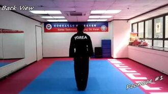 Taekwondo - Poomsae 1 (Il Jang) Slow-motion & Mirror