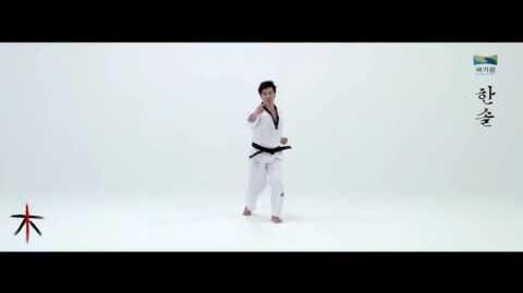 8th Taekwondo New Poomsae (한솔) Hansol for Age 50 60 Korean version