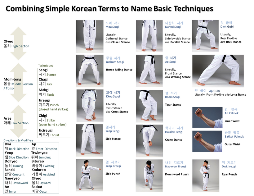 Basic Terms 1