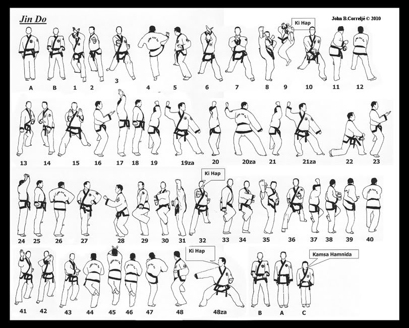 Jin Do | Taekwondo Wiki | FANDOM powered by Wikia