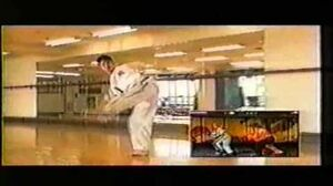 Hwoarang Tekken Motion Capture - ITF Taekwon-Do, Hwang Su Il
