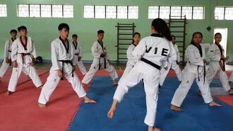 Bigak 2 - Vietnam Poomsae Team (1)