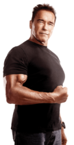 Arnold-png-8