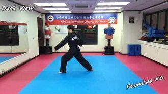 Taekwondo - Poomsae 6 (Yook Jang) Slow-motion & Mirror