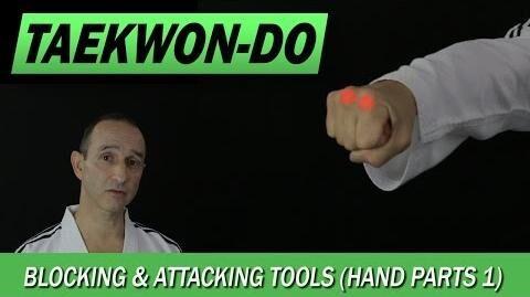 Taekwon-Do Blocking & Attacking Tools (Hand Parts 1)