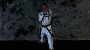 Taekwondo Martial Arts Basics Taekwondo Lung Punch