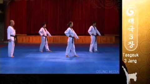 Grand Master Kyu Hyung Lee - WTF Taegeuk Sam Jang