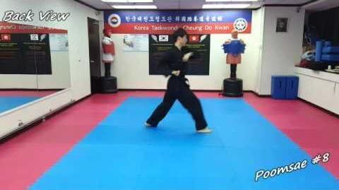 Taekwondo - Poomsae 8 (Pal Jang) Slow-motion & Mirror