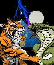 Tiger Punching Snake