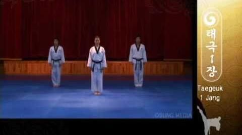 Grand Master Kyu Hyung Lee - WTF Taegeuk Il Jang