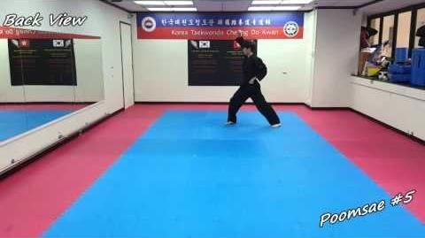 Taekwondo - Poomsae 5 (Oh Jang) Slow-motion & Mirror