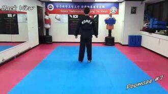 Taekwondo - Poomsae 7 (Chil Jang) Slow-motion & Mirror