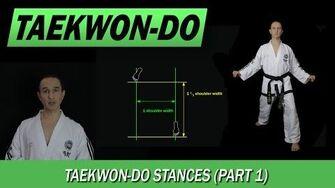 Taekwon-Do Stances (Part 1)