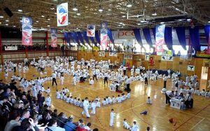 TaekwondoTournament