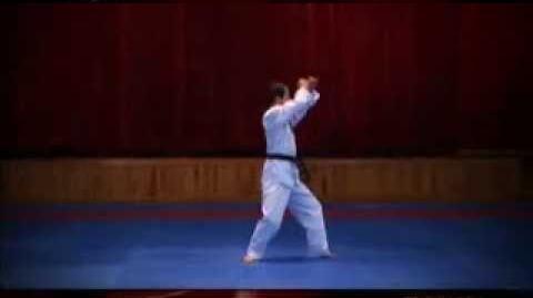 Grand Master Kyu Hyung Lee WTF Poomsae Ilyeo