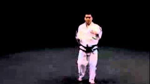 8 - HWA-RANG Tul - Taekwon-Do I.T.F