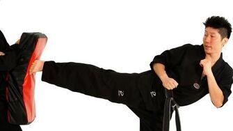 How to Do a Side Kick Taekwondo Training