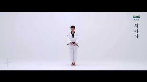 7th Taekwondo New Poomsae (새아라) Saeara for Age 30 40 Korean version