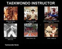 TaekwondoInstructors