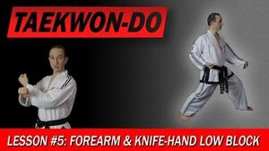 Taekwon-Do Lesson 5 Forearm & Knife-Hand Low Block