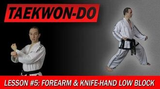 Taekwon-Do Lesson 5 Forearm & Knife-Hand Low Block