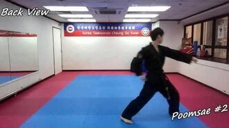 Taekwondo - Poomsae 2 (Yi Jang) Slow-motion, front and back view