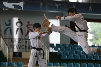 Kukkiwon JumpFrontKick