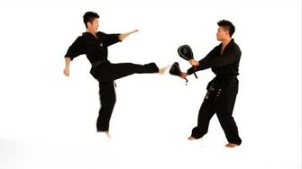 How to Do a Double Roundhouse Kick Taekwondo Training