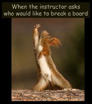 BreakABoard