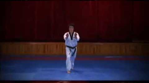 Grand Master Kyu Hyung Lee WTF Poomsae Hansu