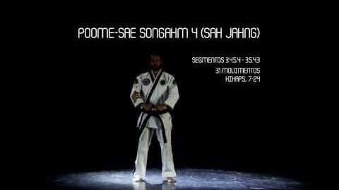 Poome-sae Songahm 4 (Sah Jahng)