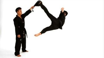 How to Do a Bolley Kick Taekwondo Training